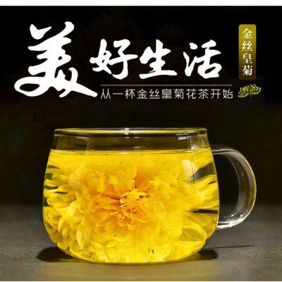 新金丝皇菊精选大朵黄菊 花茶1